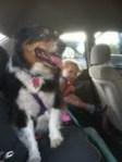 Sierra and Cooper