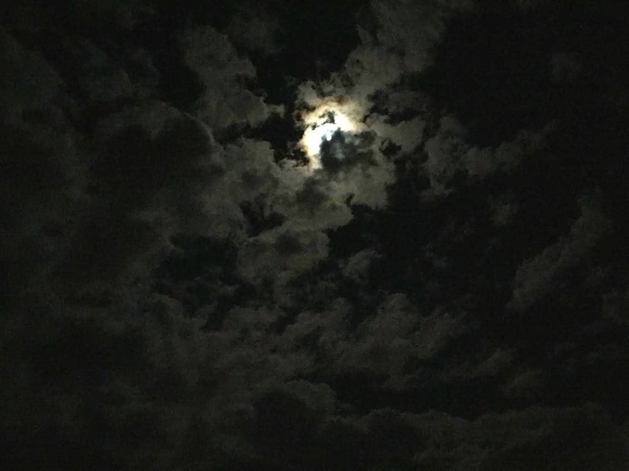 moonhowl2