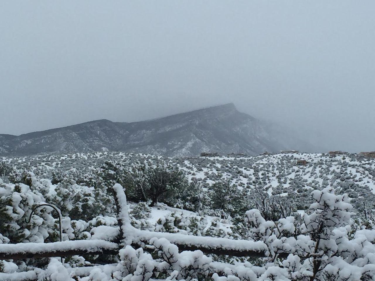 snow11-115